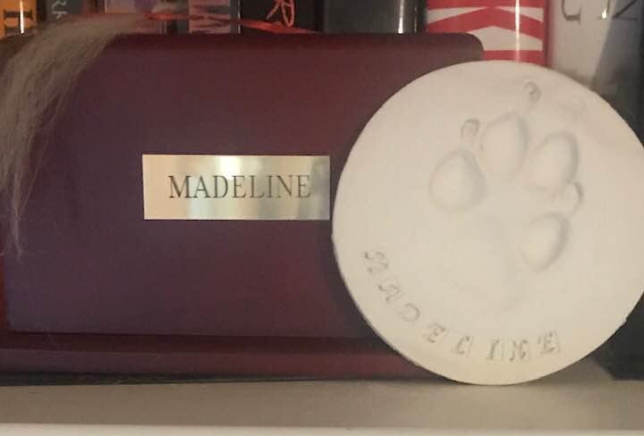 Last Maddie